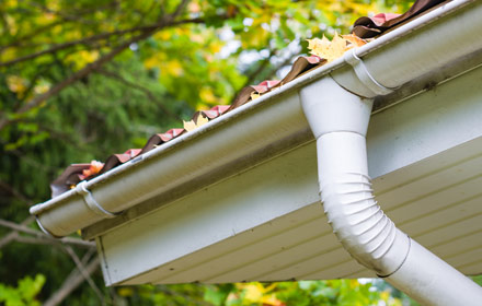 Gutter & Downpipe Repair and Replacement